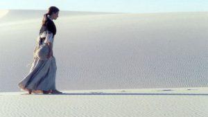 House of Sand, Cinema Disordinaire